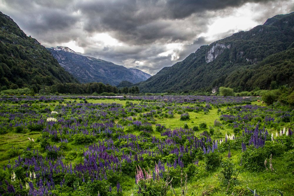 landscapes-from-patagoniajpg