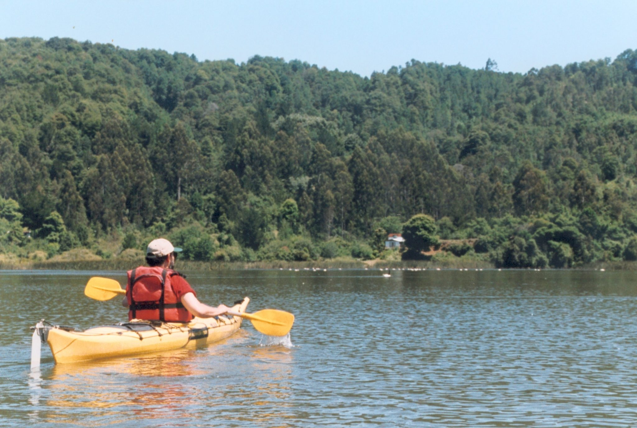 valdivia kayaking
