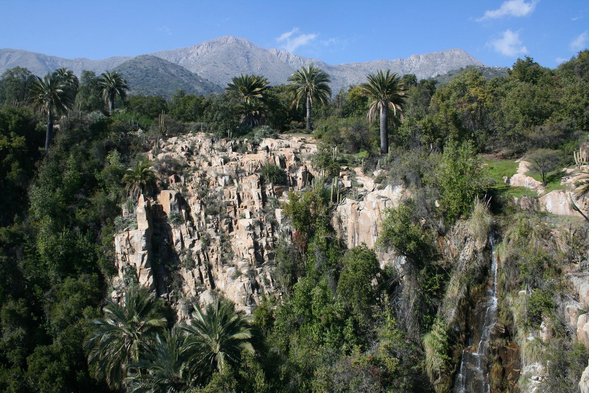 Parque nacional la campana cascada
